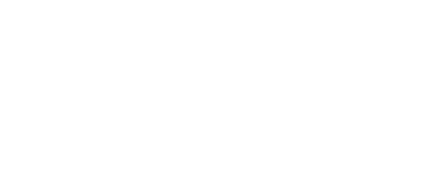 Polycom Video Infrastructure Partner Logo