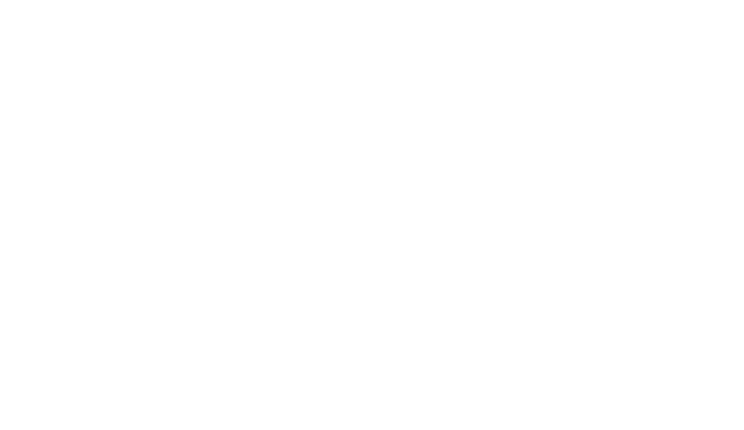 Crestron Elite Partner Logo
